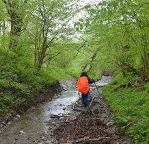 docieramy do potoku Rzepedka na granicy lasu