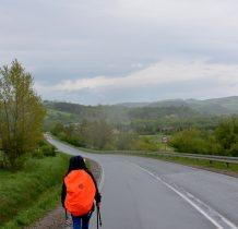 docieramy do drogi Rzepedź-Szczawne